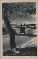 Celerina - Heimat - Brücke Am Fluss Im Winter En Hiver - Photo: D. Mischol No. 24/3205 - GR Grisons