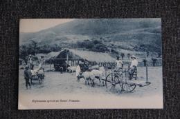 Exploitation Agricole En GUINEE FRANCAISE. - Guinée Française