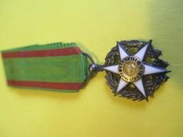 Médaille Pendante Miniature De Salon/Mérite Agricole  /Chevalier/1883    MED66 - France
