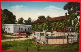 KUPALISTE DARUVAR - Vila Marija I Antonov Izvor. Croatia A152/04 - Croatie