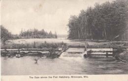 Etats Unis - Wisconsin - Minocqua - The Dam Above The Fish Hatchery  : Achat Immédiat - Etats-Unis
