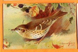 CAL1297, La Grive Chanteuse, Song Thrush, 11, Illustrateur 1925, Petite Fente Au Centre,non Circulée - Vogels