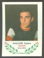 Chromo ( 6255 ) Cyclisme - Coureur - Wielrenner - Renner - Cycliste : N°132 Walliser Eugène - Wielrennen