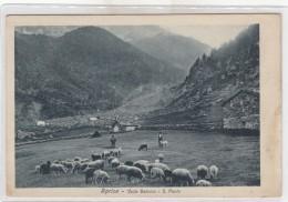 Aprica -veduta 1900valle Belviso-s.paolo-pastori - Sondrio