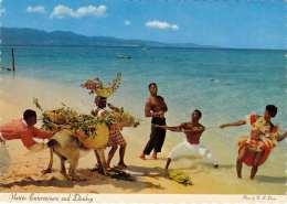 JAMAIKA - Native Entertainers And Donkey - Jamaica