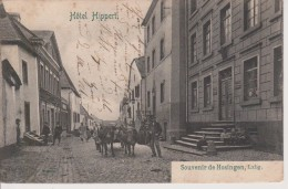 HOSINGEN-HOTEL HIPPERT- BELLE CARTE - Other