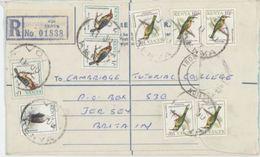 Kenya Bird Oiseau  On  Registered Letter - Birds