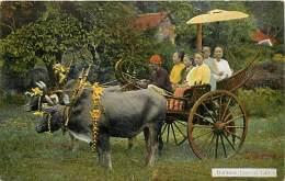 Pays Div -mynamar -burma -birmanie  - Ref G72- Burmese Festival Cart - Carte  Bon Etat - Postcard In Good Condition - - Myanmar (Burma)