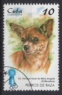 Cuba  1998  Champion Dogs (o) Chihuahua - Cuba