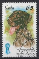 Cuba  1998  Champion Dogs (o) German Spaniel - Cuba