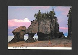 HOPEWELL ROCKS - NEW BRUNSWICK - THE ROCKS - BY LEWIS & NUGENT - Nouveau-Brunswick