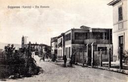128   CEPARANA - BOLANO LA  SPEZIA - FP VIAGGIATA 25.8.1939 RARA - La Spezia