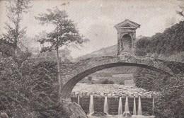 10601-SASSATELLA-FRASSINORO(MODENA)-1919-FP - Modena