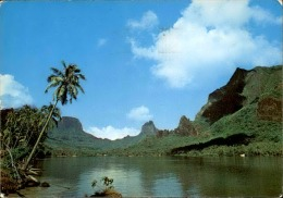 TAHITI - Baie De Paopao – A Voir - P20059 - Tahiti