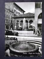 VENETO -TREVISO -F.G. - Treviso