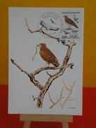 FDC Carte Maxi- Rapaces, Circaète Jean Le Blanc - Paris - 22.9.1984 - 1er Jour, Coté 2 € - Cartes-Maximum