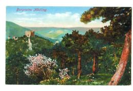 12832  CPA  Burgruine MÖDLING - Mödling