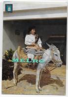 PORTUGAL- Algarve - Montanheira. - Donkeys