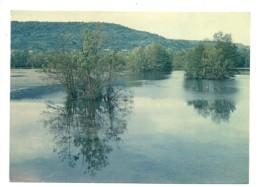 54 - Plan D'eau Dans La Vallée De La Moselle (Vue Sur MESSEIN) - Unclassified