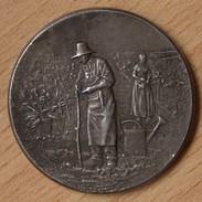 Médaille Société Horticulture De Valencienne Argent / Jardinier Jardin - Professionals / Firms