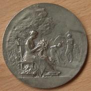 Médaille Société Horticulture De Valencienne Maillechort Par Robineau Et Fils Paris - Professionnels / De Société