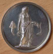 Médaille Congrès Agricole Du Nord De La France, Valenciennes 1852. Par Oudiné - Professionnels / De Société
