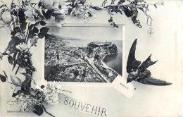 MONACO SOUVENIR VUE PARTIELLE - Monaco