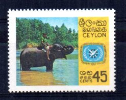 Ceylon - 1967 - International Tourist Year - MNH - Sri Lanka (Ceylan) (1948-...)