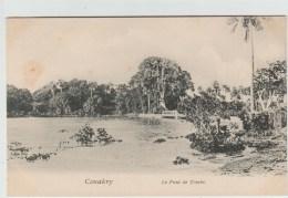 CONAKRY - LE PONT DE TOMBO - Guinea