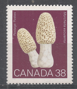Canada 1989. Scott #1248 (MNH) Champignons,  Mushrooms, Morchella Esculenta - Ungebraucht