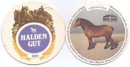 #D117-037 Viltje Haldengut - Sous-bocks