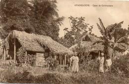 CASES DE CULTIVATEURS - Guadeloupe