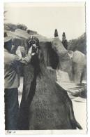 TRÈS RARE - Gardien Du Zoo De Vincennes Donne De La Nourriture à L´Éléphant De Mer - Début 1940 - Photo 11x18 Argentique - Éléphants