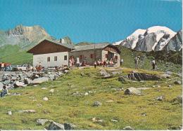 AK Pfitscherjochhaus Rigugio Passo Vizze - Alto Adige (24939) - Italien