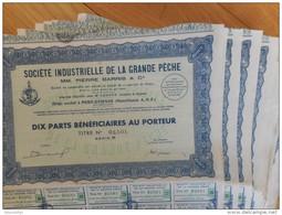 LOT De 10 Industrielle De La Grande Peche      PORT ETIENNE MAURITANIE - Shareholdings