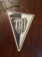 ROMANIA Fanion / Pennant - Romania  Clubul Sportiv Jiul Petrosani / Noul Complex Si Portarul Iosif Cavai! - Apparel, Souvenirs & Other