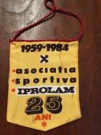 Pennant Romania - Asociatia Sportiva IPROLAM 25 ANI! - Habillement, Souvenirs & Autres