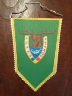 Pennant Romania - A.G.V.P.S. ROMANIA 1 - Apparel, Souvenirs & Other