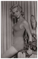 Sexy DIANE McBAIN Actress PIN UP PHOTO Postcard - Publisher RWP 2003 (01) - Entertainers