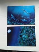 Lot De 2C  De DANIEL TERNON OCEANIDE 2 Et OCEANIDE 1 - Dauphins