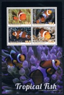 Bloc Sheet Poissons Tropical Fish Neuf MNH ** Micronesia 2014 - Poissons