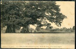 GUINÉE FRANCAISE - CP EN FM DU BATAILLON DE GUINÉE , DE KNIDIA LE 22/12/1916 POUR L'AUDE - TB