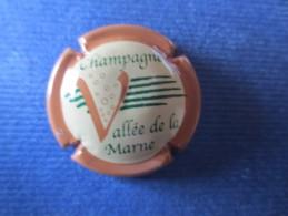 VALLEE DE LA MARNE. Contour Marron Clair. 2002 - Vallée De La Marne