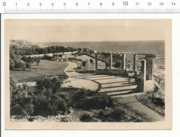 CPSM Nathanya - The Victory Garden / Israel / CP 2/405 - Israele
