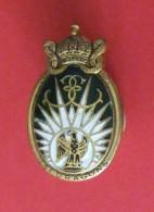 Insigne En Métal Du 13e Régiment De Dragons Parachutistes - Landmacht