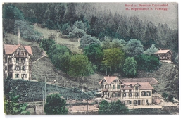 PASSUGG: Hotel U. Pension Kronenhof M. Dependance 1907 - GR Grisons