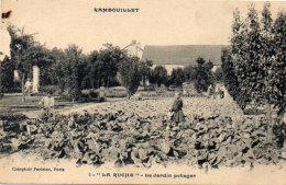 RAMBOUILLET - La Ruche - Le Jardin Potager .   (91036) - Rambouillet