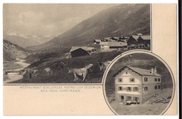 AVERS JUF: 2-Bild-AK Restaurant Edelweiss, Kühe Mit Dorf~1910 - GR Grisons