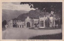VITTORIO VENETO  /  Via Cavour - S.I.A.V. E Bar Alpino _ Viaggiata 1936 - Treviso