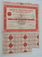 Titre Société ELECTRO CABLE Part Bénéficiaire Au Porteur 24 Coupons Action Paris 1936 - Action Obligation - Electricité & Gaz